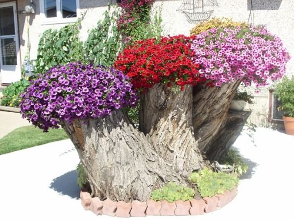Image result for tree stump planter