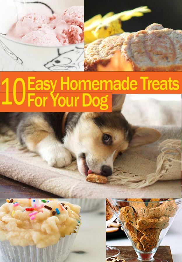 10-dog-treats